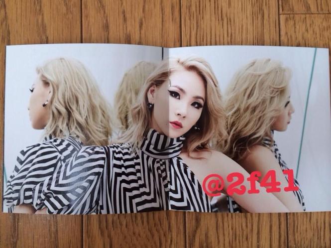 Crush 2NE1 3