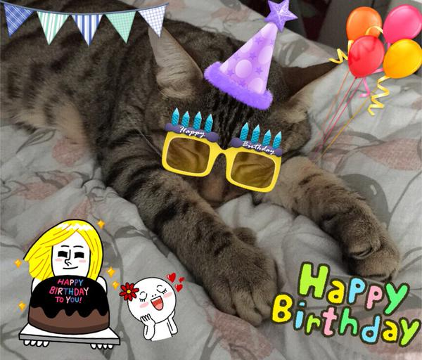 Dadoong 4th Birthday